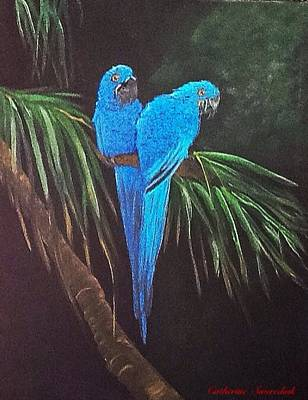 Painting - Macaws by Catherine Swerediuk