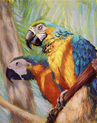 Painting - Macaws In The Sunshine by Susan Jenkins