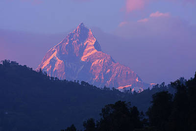 Photograph - Machhapuchchhre In Evening Light by Aidan Moran