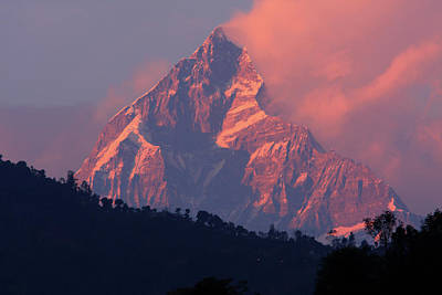Photograph - Machhapuchchhre Sunset by Aidan Moran