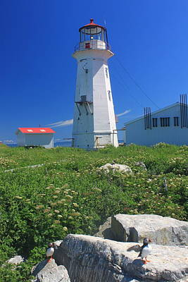 Machias Seal Island Photograph - Machias Seal Island Lighthouse Puffins by John Burk