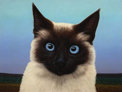 Kitten Painting - Machka 2001 by James W Johnson