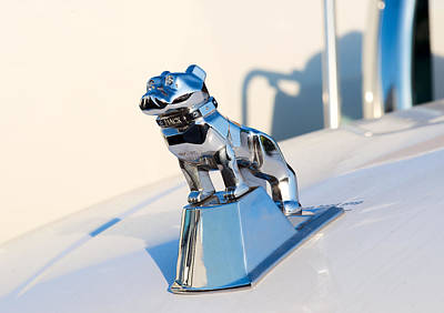 Photograph - Mack Bulldog Silver On White by Rospotte Photography