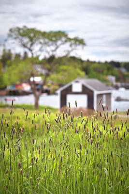 Photograph - Mackerel Cove Boathouse by Eric Gendron