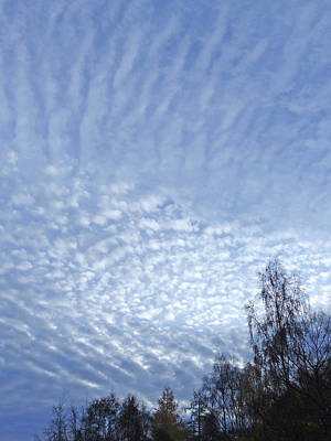 Photograph - Mackerel Sky by Phil Banks
