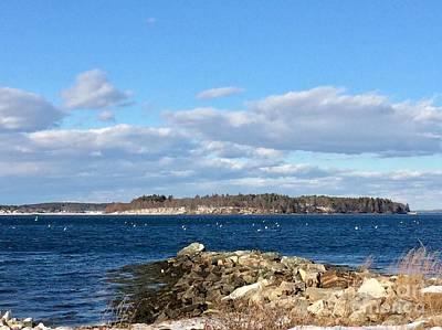 Mackworth Island Falmouth Maine Art Print