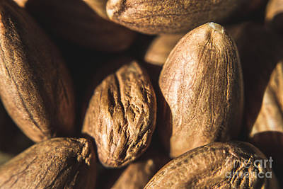 Photograph - Macro Almonds by Jorgo Photography - Wall Art Gallery