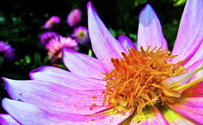 Flower Digital Art - Macro by Cesar Vieira