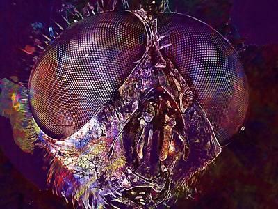 Digital Art - Macro Fly Insect Nature  by PixBreak Art