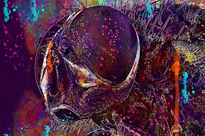 Digital Art - Macro Insect Eyes by PixBreak Art