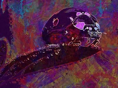 Digital Art - Macro Ladybugs Ladybug Bugs  by PixBreak Art