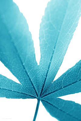 Photograph - Macro Leaf Turquoise Vertical by Jennie Marie Schell