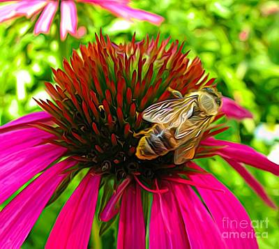 Photograph - Macro Of Bee On A Fuchsia Coneflower Expressionist Effect by Rose Santuci-Sofranko