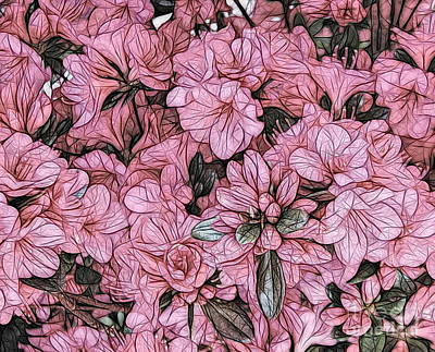Photograph - Macro Of Pink Azaleas Rhododendron Flowers Abstract Sketch Effect by Rose Santuci-Sofranko