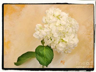 Mixed Media - Macro White Hydrangea by Marsha Heiken