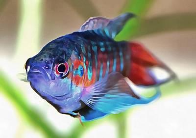 Painting - Macropodus Opercularis Paradise Fish by Tracey Harrington-Simpson