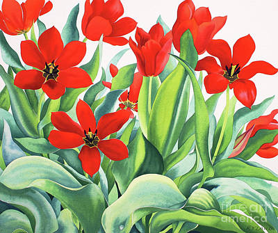 Painting - Madame Lefeber Tulips  by Christopher Ryland