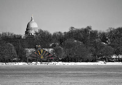 Photograph - Madison Capitol And Zoo 3 by Steven Ralser