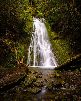 Photograph - Madison Creek Falls by Mark Robert Rogers