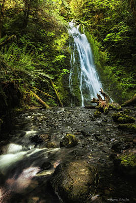 Madison Falls - An Elwha Sanctuary Art Print by Thomas Schoeller