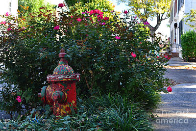 Southern Indiana Autumn Photograph - Madison Fire Hydrant by Amy Lucid