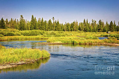 Yellowstone Wall Art - Photograph - Madison River by Delphimages Photo Creations