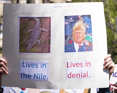 Photograph - Madison Science March Sign 11 by Steven Ralser