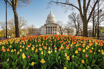 Photograph - Madison Spring by Todd Klassy