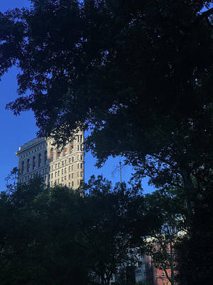 Photograph - Madison Square Park by Joseph Yarbrough