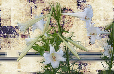 Digital Art - Madonna Lily In Abstract by rd Erickson