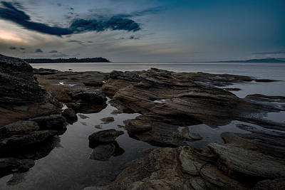 Photograph - Madrona Blue by Randy Hall