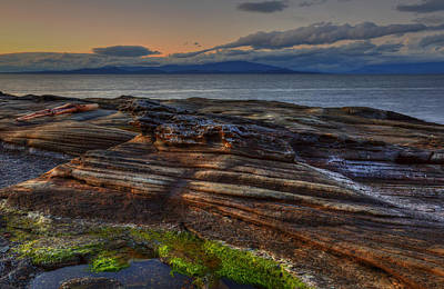 Photograph - Madrona Evening by Randy Hall