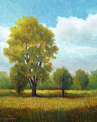 Painting - Madrona Marsh Trees Plein Air by Douglas Castleman