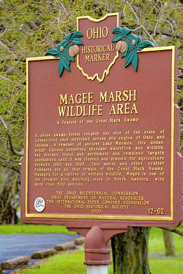 Photograph - Magee Marsh Wildlife Area by LeeAnn McLaneGoetz McLaneGoetzStudioLLCcom