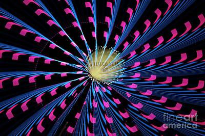 Photograph - Magenta And Blue Burst by Sonya Lang