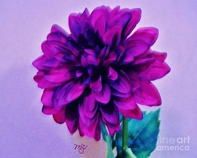 Digital Art - Magenta Purple Petals by Marsha Heiken