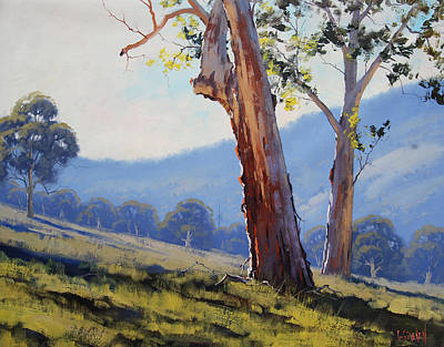 Eucalyptus Painting - Magestic Gum Tumut by Graham Gercken