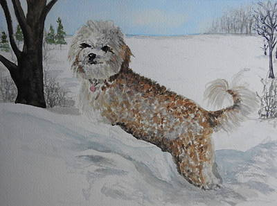 Painting - Maggie by Betty-Anne McDonald