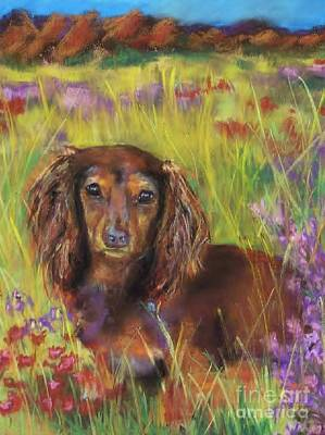 Dog Art Drawing - Maggie by Frances Marino