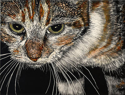 Scratchboard Painting - Maggie The Cat by Robert Goudreau