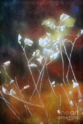 Photograph - Magic Autumn Light by Jutta Maria Pusl