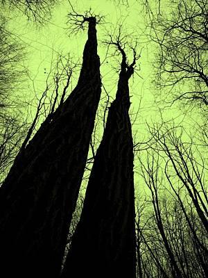 Magic Forest_2 Art Print