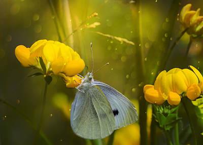Weed Digital Art - Magic In The Weeds by Bill Tiepelman