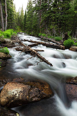 Photograph - Magic Mountain Stream by James BO Insogna