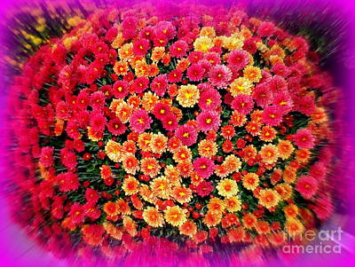 Photograph - Magic Mums by Ed Weidman