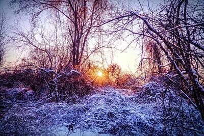 Mixed Media - Magic Of Winter by Lilia D
