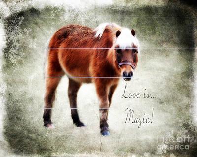 Magic Pony  Art Print by Anita Faye