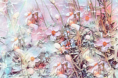 Photograph - Magical Anemones by Cathy Donohoue
