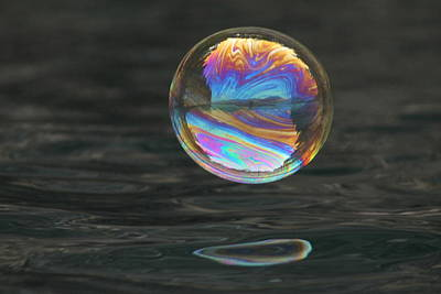 Photograph - Magical Bouncing Bubble by Cathie Douglas