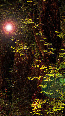 Magical Dark Woods Art Print by Jean Booth